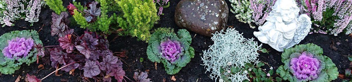 Blumen-Würfel